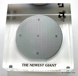 AMD silicon wafer