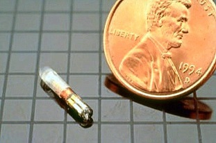 Destron Fearing RFID Chip